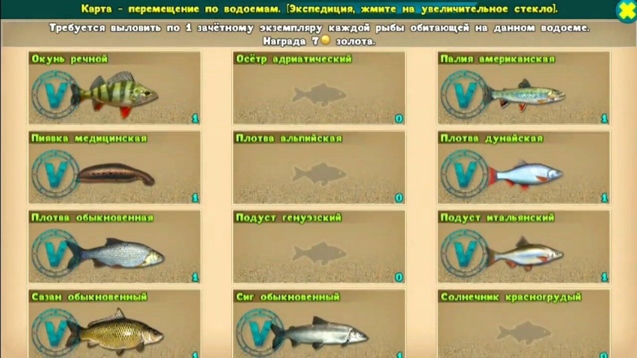 реальная русская рыбалка