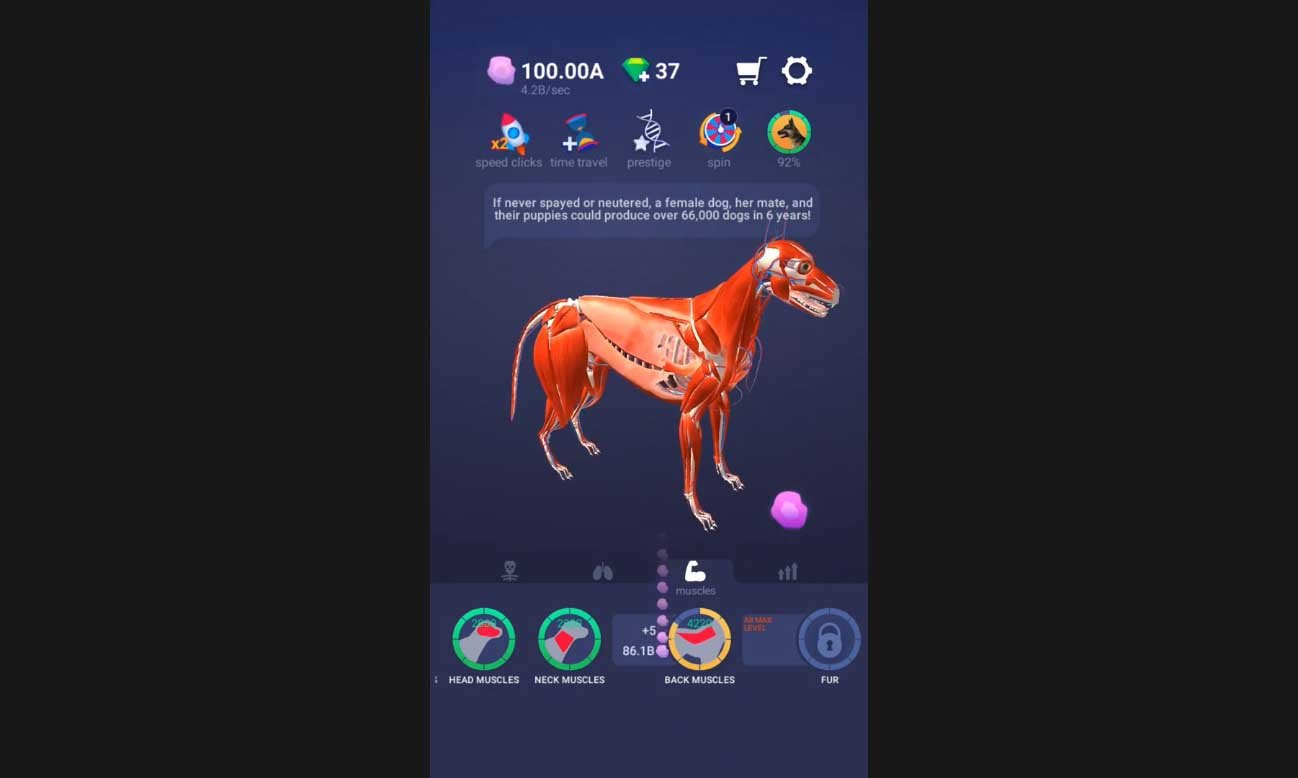 Idle Pet – Create cell by cell взлом (Мод много денег) на ...